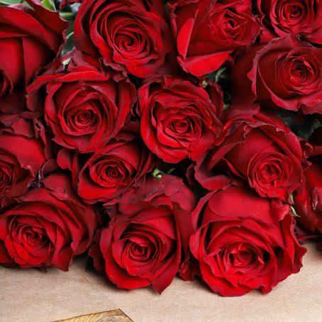 Ecuadorean Roses